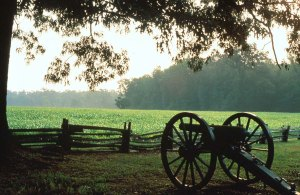 Image-3-Shiloh-National-Military-Park3-Shiloh-State-of-TN-21